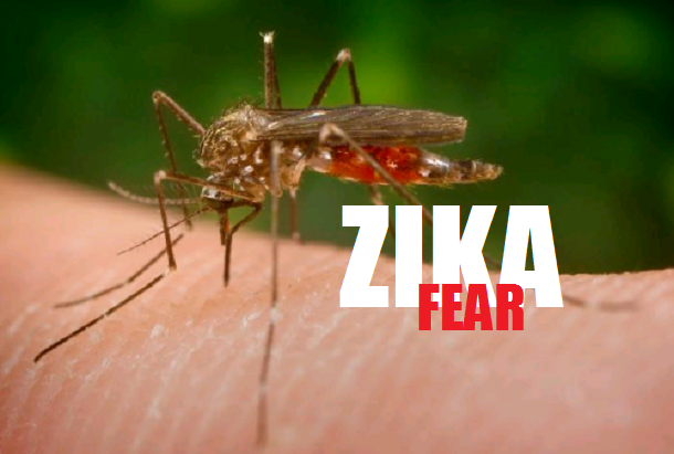 http://21stcenturywire.com/wp-content/uploads/2016/01/1-zika-virus.png