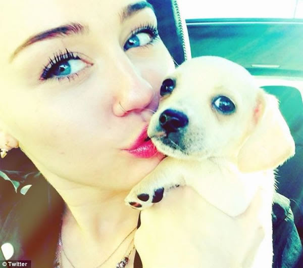 La nueva mascota de Miley Cyrus 1