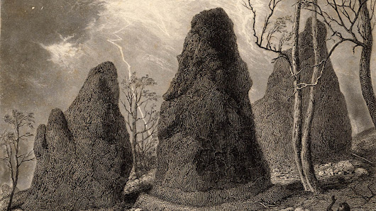 What Really Happened at Hanging Rock - VICE