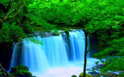 forest river falls desktop background wallpaper