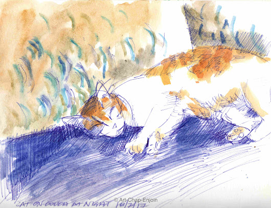 #450 – Cat on couch at night