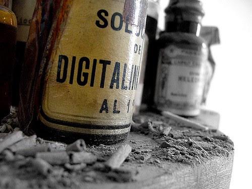 http://farm1.static.flickr.com/35/122319587_dafd712bb6.jpg