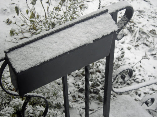 first snow fall......