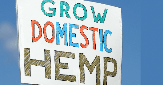 Washington Committee Passes Bill to Decriminalize Industrial Hemp