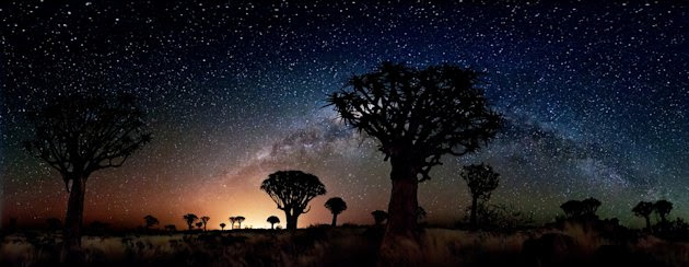 'Quiver Trees by Night'…