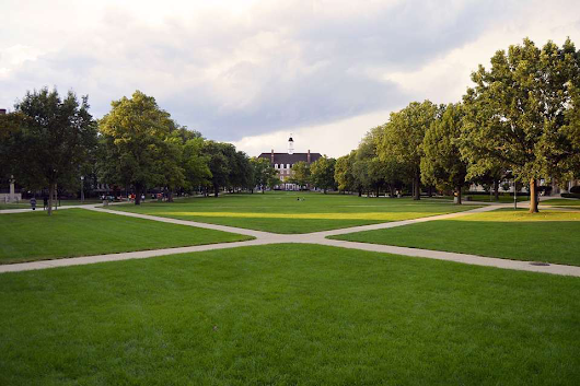 Making an impact: Landscaping for college campuses
