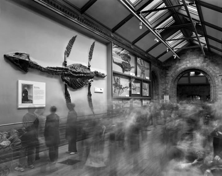 foule musee 05 La foule des musées  photographie bonus art