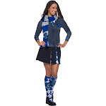 The Wizarding World Of Harry Potter Ravenclaw Deluxe Scarf - 66981 - Blue - One Size
