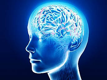 beyin resimleri ile ilgili görsel sonucu
