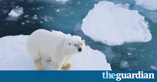 I am an Arctic researcher. Donald Trump is deleting my citations | Victoria Herrmann | Opinion | The Guardian