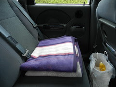 Car blanket, and my elegant car bin