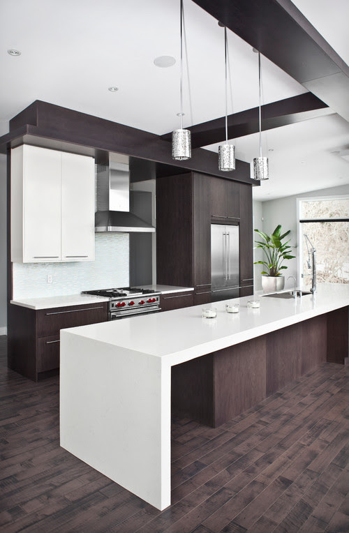 Contemporary Kitchen Remodel - Burlington, On