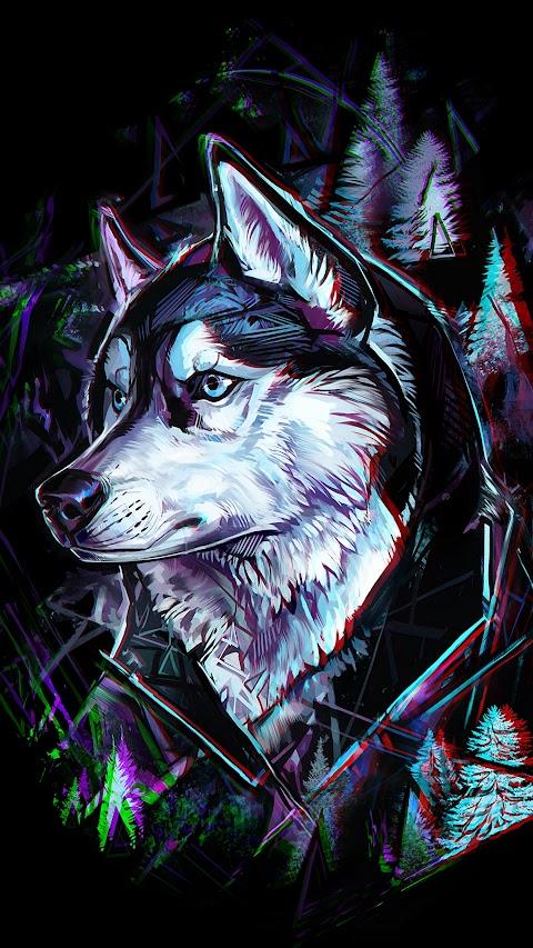 خلفية الذئب الوفي لكل البشر بدقة عالية hd