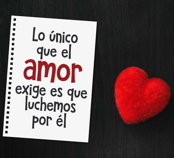 Frases Para Luchar Por Un Amor Alos80 Com
