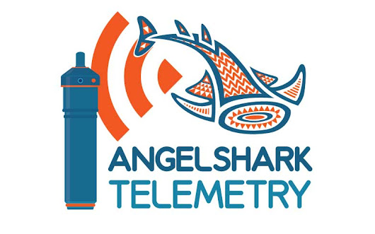 An acoustic telemetry network for the angelshark in the Canary Islands - ElasmoCan