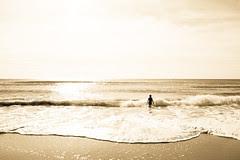 Under the setting sun, embrace the sea