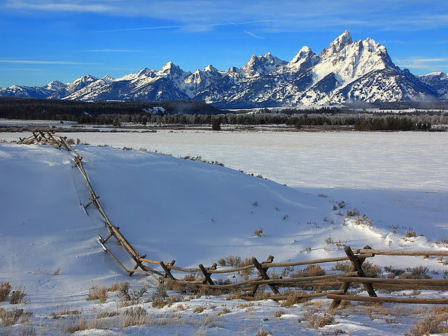 IMG_2447 Winter Morning, Grand Teton National Park