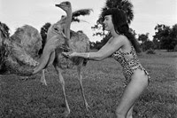 Bettie Page, Africa USA, Boca Raton, Florida, 1954
