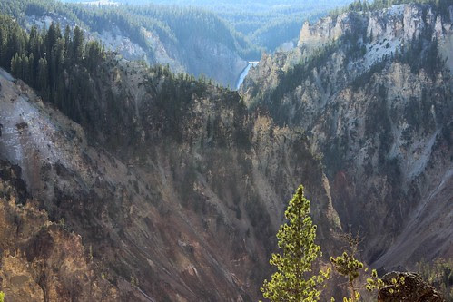IMG_2142_Lower_Falls_&_Yellowstone_Canyon_from_North_Rim