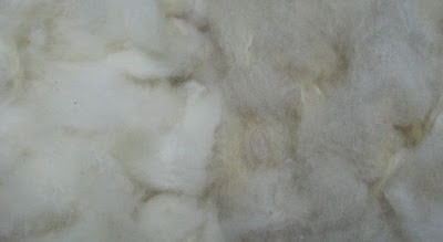 Clean fawn fleece on the right.