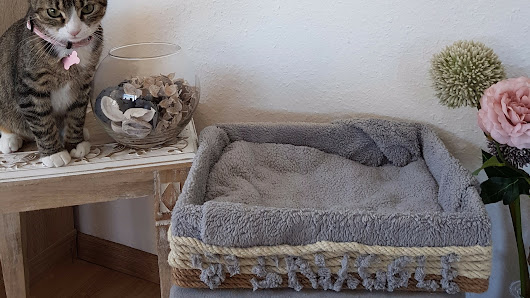 DIY Cat Furniture Ideas: How to Make a Cat Bed