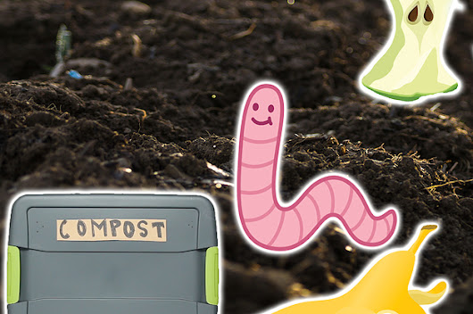 Composting Is So Easy With This DIY