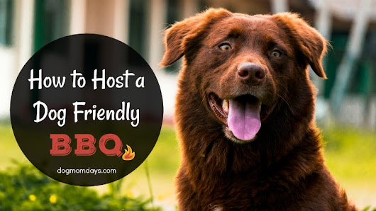 Tips for Hosting a Dog Friendly BBQ - Dog Mom Days