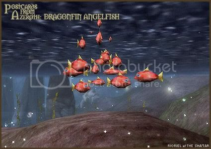 Postcards of Azeroth: Dragonfin Angelfish, by Rioriel Ail'thera