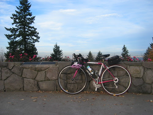 Lemond with Mt St Helens in the background