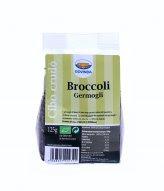 Broccoli - Semi Germogliati