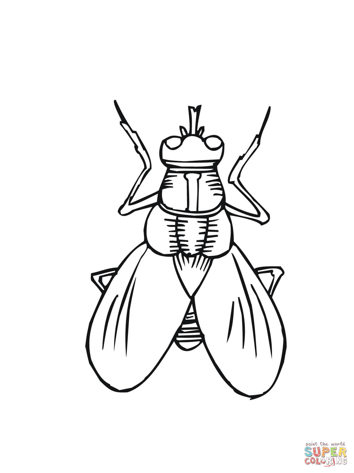 Horse-fly coloring, Download Horse-fly coloring for free 2019