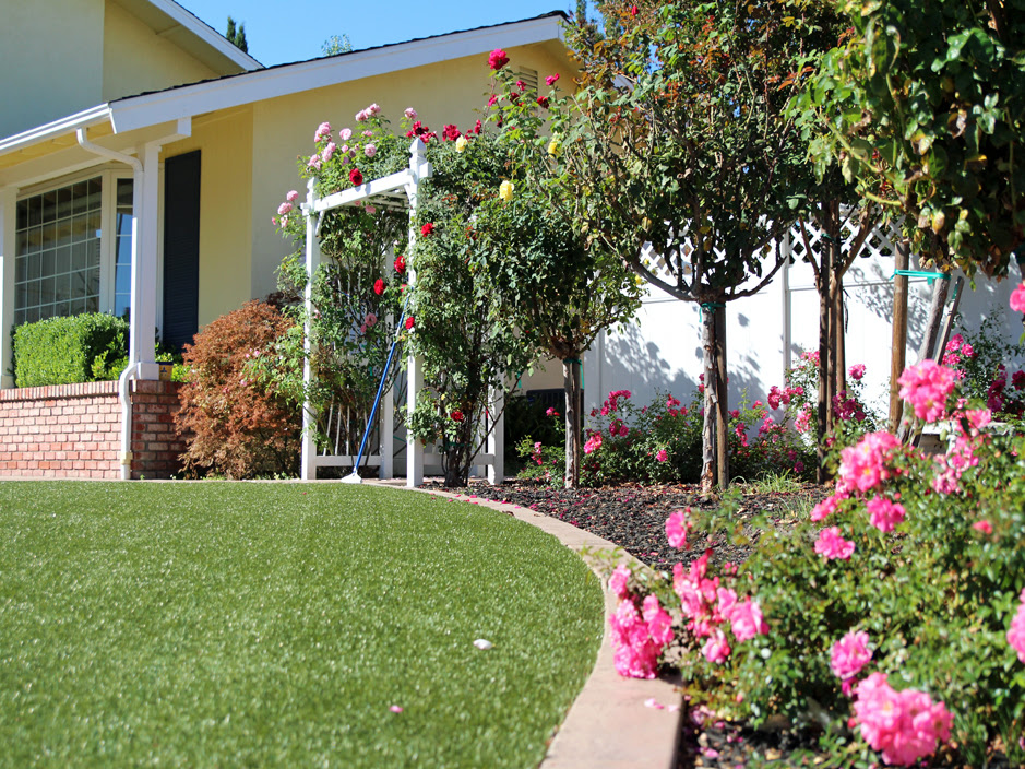 Green Lawn Union City California Garden Ideas Landscaping