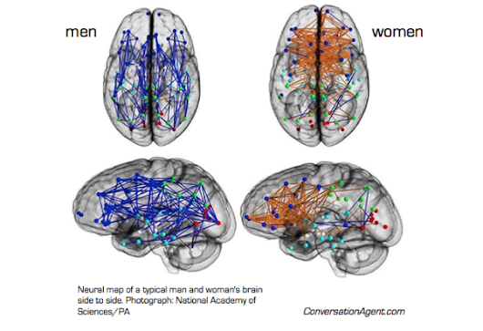 Are Men and Women's Brain Different?