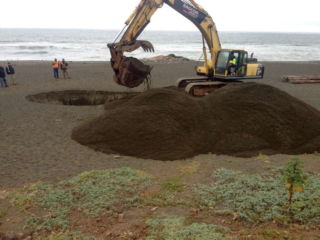 An excavator digs a hole on May 19, 2015, as workers bury two whales that washed ashore on a Pacifica beach, causing a stink that prompted complaints from residents. Photo: Steve Rubenstein / ONLINE_YES