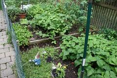 side garden 022