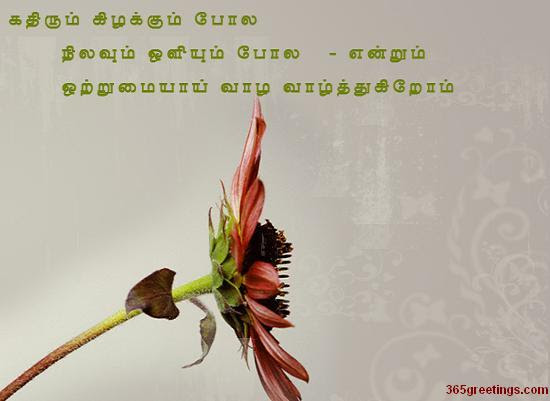 Tamil Post Card For Anniversary From 365greetingscom