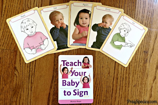 Baby Sign Cards (A Timberdoodle Review) - Pray Species