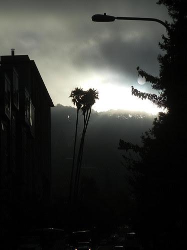 DSCN9200 _ Fog & Sun, Berkeley, CA