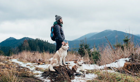14 Safety Tips and Tricks for Hiking With Your Dog