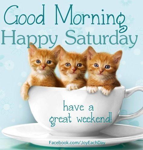 Bildergebnis für Happy Saturday