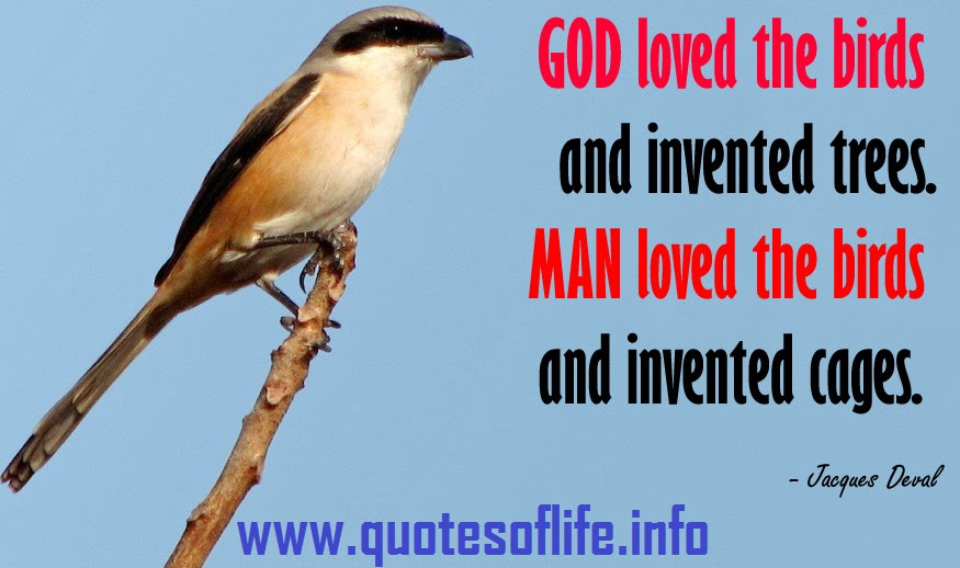 Birds Quotes God Loves The Birds And Inventes Trees By Jacques