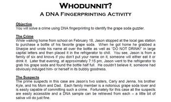 Answers Dna Fingerprinting Worksheet - worksheet