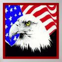 Bald Eagle and American Flag Poster print