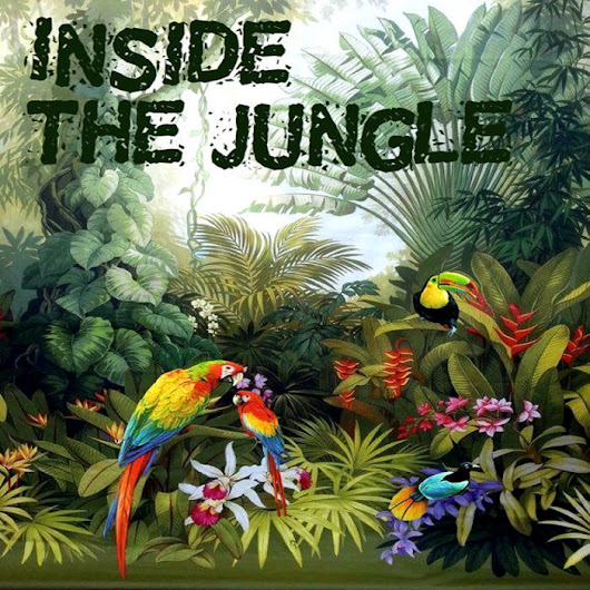Inside the Jungle, by Lomita