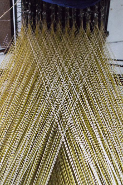 weavers / tecedeiras