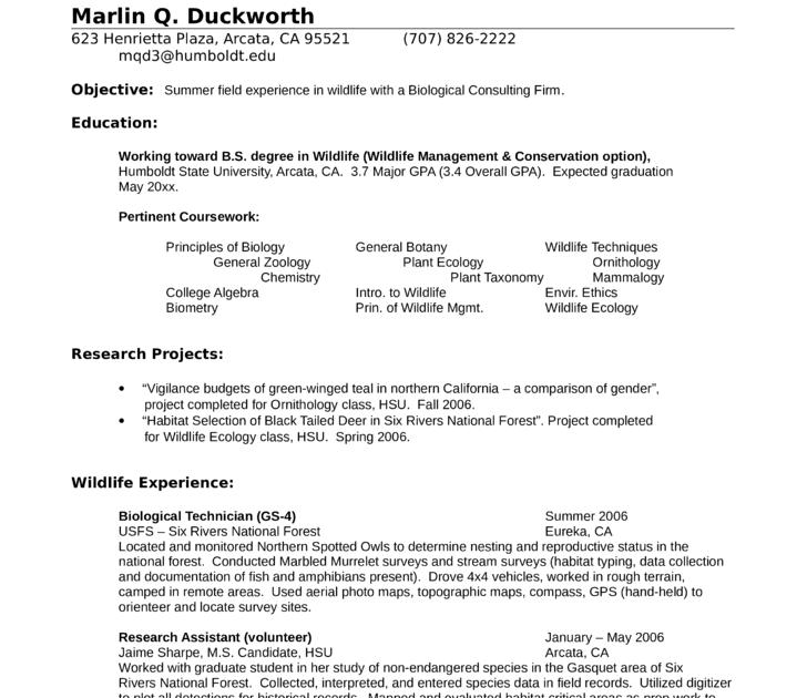 Veterinary student resume template