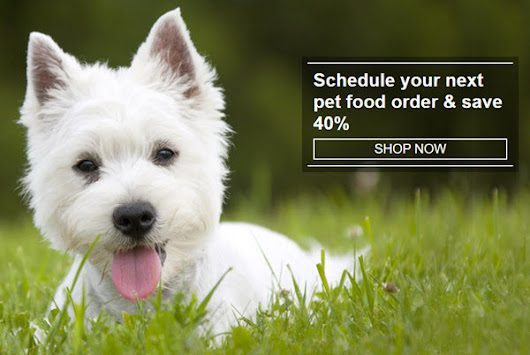 *HOT* Amazon Deal: 40% OFF Dog Food and Cat Food | Woof Woof Mama