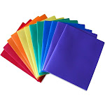 STEMSFX Heavy Duty Plastic 2 Pocket Folder, for Letter Size Papers, Includes Business Card slot. Assorted - Pack of 12