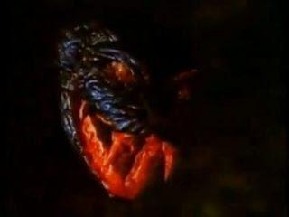 photo spasms_snake-300x222_zps61610a86.jpg