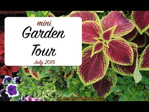 Garden Tour Video is Up / July 2019